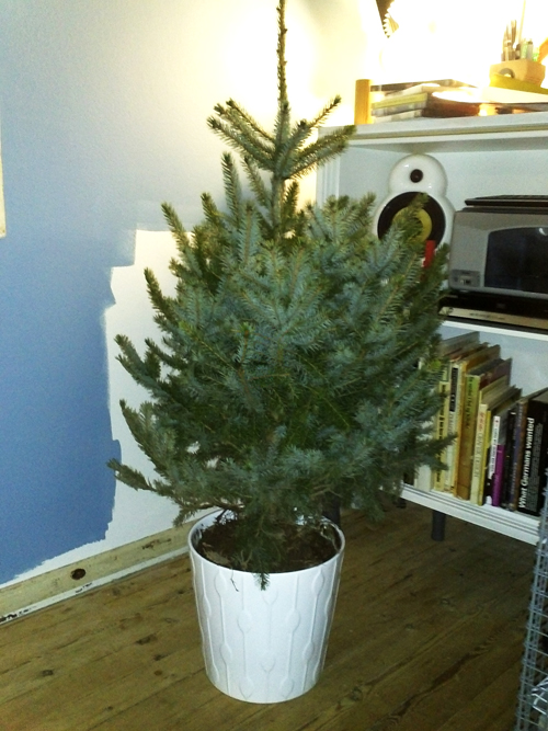 juletræ | stuen tv.