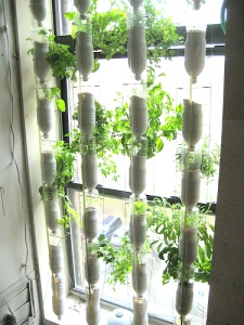 window-farmsmake
